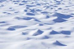 Paesaggio di inverno in Polonia Immagine Stock