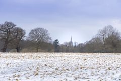 Paesaggio di inverno in Richmond Park Torre della cattedrale veduta da una distanza immagine stock libera da diritti