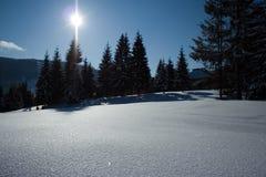 Paesaggio di inverno in Romania Immagini Stock Libere da Diritti