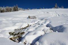 Paesaggio di inverno in Romania Fotografie Stock