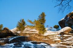Paesaggio di inverno in Siberia Fotografia Stock