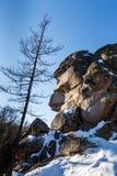 Paesaggio di inverno in Siberia Immagini Stock Libere da Diritti