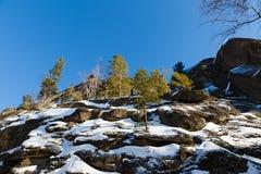 Paesaggio di inverno in Siberia Fotografia Stock Libera da Diritti