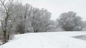 Paesaggio di inverno di Snowy a Havelland Brandeburgo, Germania Lago Guelper stock footage
