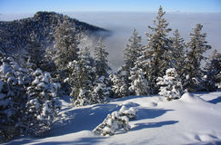 Paesaggio di inverno. Stazione sciistica Borovets, Bulgaria Fotografia Stock Libera da Diritti
