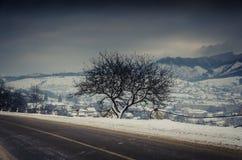 Paesaggio di inverno, strada innevata nelle montagne con gli alberi Fotografie Stock Libere da Diritti