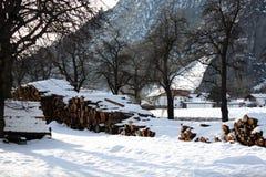 Paesaggio di inverno sulla costa del fiume in alpi in Austria Immagini Stock Libere da Diritti