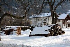 Paesaggio di inverno sulla costa del fiume in alpi in Austria Fotografia Stock Libera da Diritti