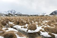 Paesaggio di inverno sulle isole di Lofoten, fotografia stock
