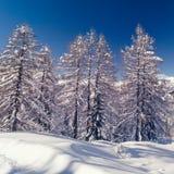 Paesaggio di inverno vicino al centro dello sci di Vogel in montagne Julian Alps Fotografia Stock