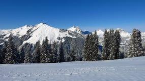 Paesaggio di inverno vicino a Gstaad Fotografia Stock Libera da Diritti