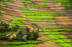 Paesaggio di Kabale Fotografia Stock