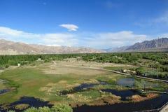Paesaggio di Ladakh Fotografie Stock Libere da Diritti