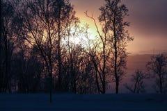 Paesaggio di Lappish al tramonto Fotografie Stock