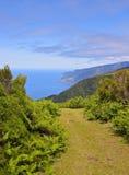 Paesaggio di Madeira Fotografia Stock