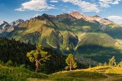 Paesaggio di mattina con gli alberi e le montagne Fotografia Stock
