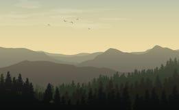 Paesaggio di mattina con le siluette nebbiose delle montagne e delle colline, Fotografie Stock Libere da Diritti