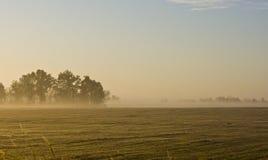 paesaggio di mattina del campo dell'azienda agricola del Missouri Fotografie Stock Libere da Diritti