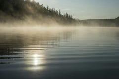 Paesaggio di mattina di estate con il fiume e la nebbia fotografia stock