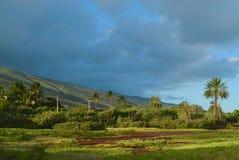 Paesaggio di Molocai lungo la riva del sud immagini stock libere da diritti