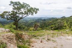 Paesaggio di Monteverde, Costa Rica Fotografie Stock