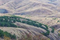 Paesaggio di Mountanious con gli alberi nella priorità alta Fotografie Stock Libere da Diritti