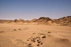 Paesaggio di Namib Immagini Stock