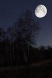 Paesaggio di notte Immagini Stock Libere da Diritti