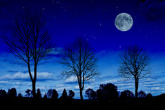 Paesaggio di notte Immagini Stock
