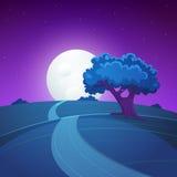 Paesaggio di notte illustrazione vettoriale