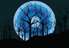Paesaggio di notte: alberi e la luna Fotografie Stock