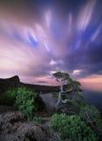 Paesaggio di notte con il bello albero alle montagne con luce della luna immagini stock