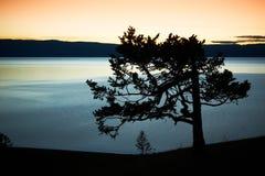Paesaggio di notte contro un lago Baikal di declino Fotografia Stock Libera da Diritti