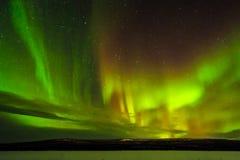 Paesaggio di notte di inverno con la foresta, la strada e la luce polare sopra gli alberi Immagine Stock Libera da Diritti
