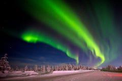 Paesaggio di notte di inverno con la foresta, la strada e la luce polare sopra gli alberi Fotografia Stock