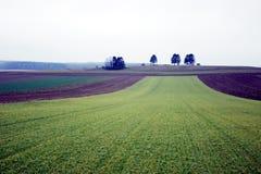 Paesaggio di novembre Fotografie Stock