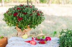 Paesaggio di nozze Fotografie Stock