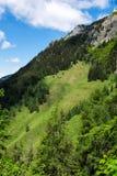 Paesaggio di panorama in Baviera con le montagne delle alpi e prato alla molla Fotografia Stock Libera da Diritti