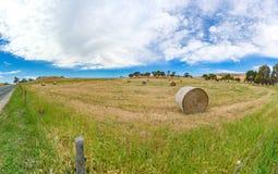 Paesaggio di panorama del campo dell'azienda agricola con le balle della paglia Fotografia Stock