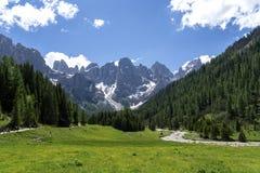 Paesaggio di panorama della gamma di Pale di San Martino durante la stagione estiva Paesaggio di estate di Passo Rolle - gamma di immagine stock