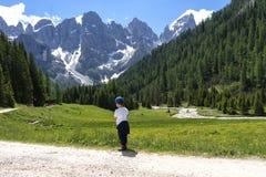 Paesaggio di panorama della gamma di Pale di San Martino durante la stagione estiva Paesaggio di estate di Passo Rolle - gamma di fotografie stock