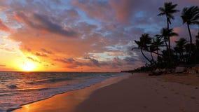 Paesaggio di Paradise della spiaggia tropicale, delle palme e dell'alba dorata Repubblica dominicana video d archivio