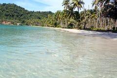 Paesaggio di paradiso con le palme e la sabbia bianca Fotografie Stock