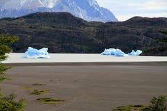 Paesaggio di Patagonia Immagine Stock