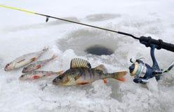 Paesaggio di pesca di inverno Fotografia Stock