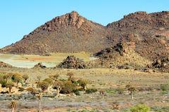 Paesaggio di pietra del deserto Fotografia Stock Libera da Diritti