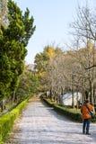 Paesaggio di pietra di autunno della strada dell'elefante Fotografie Stock Libere da Diritti