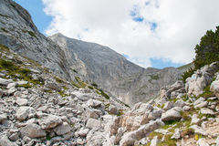 Paesaggio di Pirin della montagna Immagini Stock Libere da Diritti