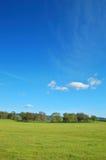 Paesaggio di primavera Immagini Stock