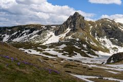 Paesaggio di primavera del parco nazionale di Rila, Bulgaria Immagini Stock Libere da Diritti